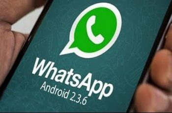 Android 2.3.6 WhatsApp